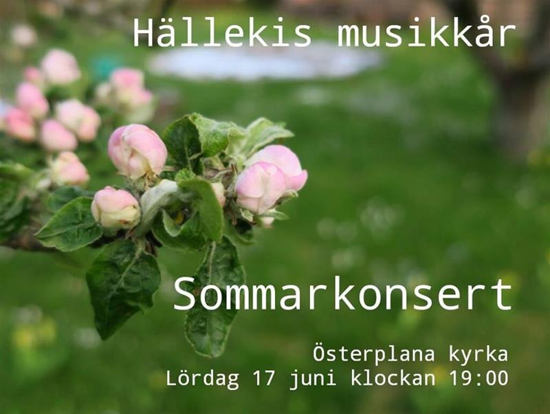 Sommarkonsert 2017