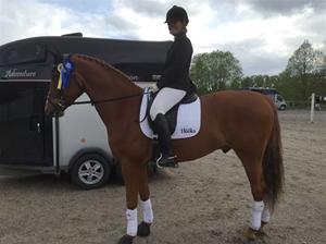 Elin och Qampari vinst Norrtälje14 maj 2015